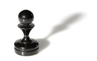 Chess piece isolated on white