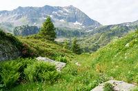 Gipfel vom Berg in den Alpen im Sommer