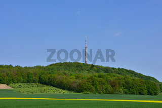 Der Loebauer Berg