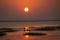 Sunset, Tadoba Andhari tiger reserve, Maharashtra, India.