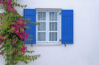 Fenster  mit Bougainvillea