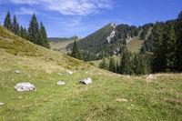 Weg zum Geigelstein im Hintergrund, Tirol, Österreich