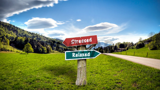 Street Sign Relaxed versus Stressed