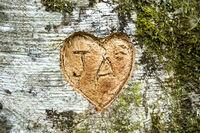 Word Ja in a heart