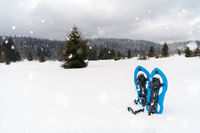 Blue snowshoes in fresh show
