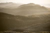 Dünenlandschaft auf Sylt an einem Nebeltag