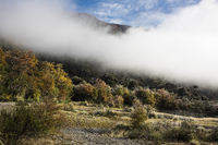 Early morning late autumn in the National Park Los Alerces, Chubut Province, Patagonia, Argentina, in the fall