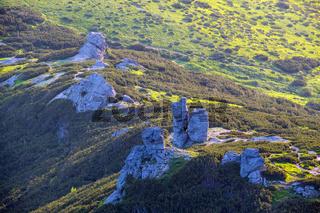 Summer mountain morning landscape.