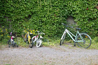 Bicycles for children of all ages near ivy-covered houses