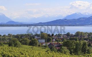 Bodensee, Landschaftsbild mit Schweizer Bergen