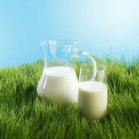 Milk jug and glass on grass field