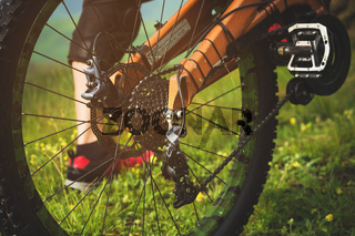 Close-up view of rear wheel cassette from mountain bike on the landscape and green grass