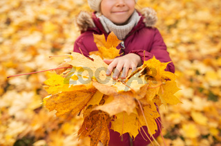 close up of girl with maple leaves at autumn park