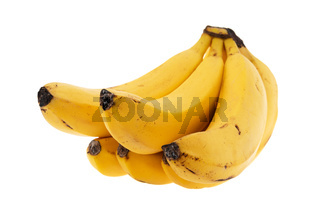 Bananas bunch on white background