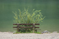 Wooden bench near the Gleinkersee in Austria