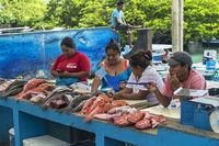 Fischverkäufer, Fischmarkt, Puerto Ayuro, Insel Santa Cruz, Galapagos Inseln, Ecuador