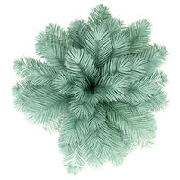 silver date palm tree isolated on white background. top view. 3d illustration