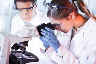Young researchers researching in life science laboratory.