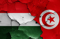 flags of Hungary and Tunisia painted on cracked wall