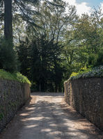 Narrow traditional stone wall track leading to forest