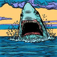 Dangerous aggressive shark in the ocean