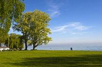 Park mit Baum am Bodensee, Arbon , Schweiz