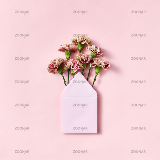Mock up envelope with pink carnations for congratulation on a pastel pink background.