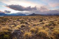 Perito Moreno Park