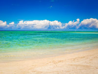 Sandy tropical beach. Beautiful landscape.