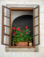 Flowers in pots in the open window of the historic house
