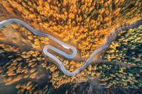 Aerial view of the winding road in autumn forest at sunset
