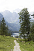 Obersee_MG_3667.jpg