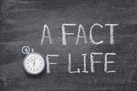 a fact of life watch