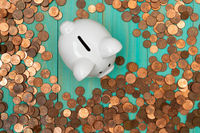 White piggy bank with coins