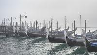 Gondolas Parked at Shore, Venice, Italy