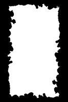 White Background with Irregular Shapes Borders