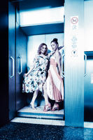 Dark color toned picture of two fashionable sexy girl in the elevator.