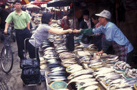 SOUTHKOREA SEOUL MARKET FISH