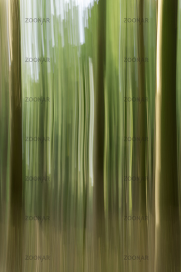 Surface with vertical lines and stripes