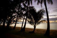 Palm Cove Beachfront