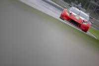 IMSA:  August 03 Continental Tire Road Race Showcase