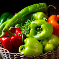 various harvested peppers and hot peppers in basket