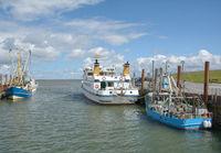 Hafen von Strucklahnungshoern auf Nordstrand,Nordsee,Nordfriesland,Schleswig-Holstein,Deutschland