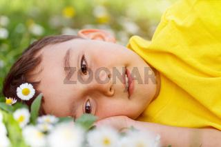 Kind Frühling Blumen Blumenwiese kleiner Junge träumen draußen Natur