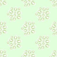 Cucumber Seed Seamless Pattern Isolated on Green Background