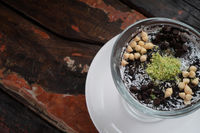 Closeup chocolate mousse pudding with coconut, pistachio powder and chocolate chips on rustic wooden table
