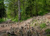Wanderwege im Elbsandsteingebirge