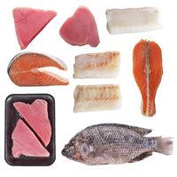 Variety of fish on white background