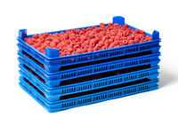 Raspberries in Several Crates on the Market