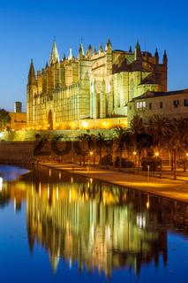 Catedral de Palma de Mallorca Kathedrale Kirche Abend Nacht Hochformat Reise Reisen Spanien